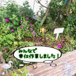 今日はみんなで奉仕作業!木更津市の軽自動車専門店ロータスイシヤマ